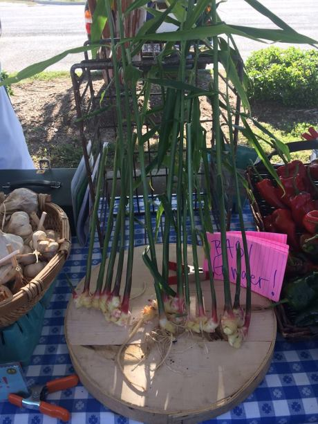 Western Wake Farmer's Market Food