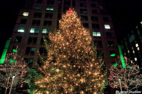Ipreo Raleigh Winterfest Tree. ©Luster Studios.